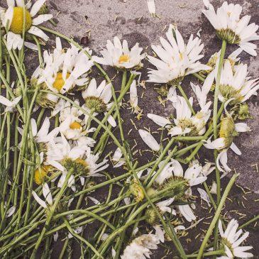 Kako preboleti smrt ljubljene osebe